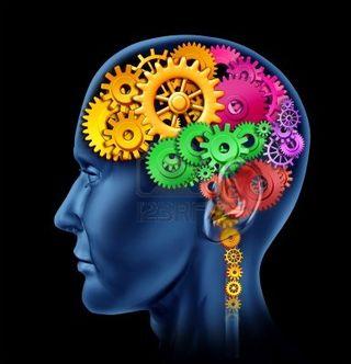 Brain-image-picture-clipart-4